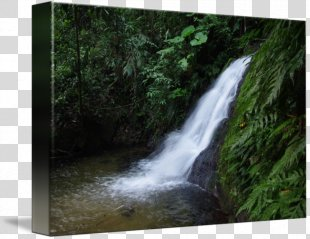 Waterfall Water Resources Nature Reserve Rainforest Stream - Waterfall Scenery PNG