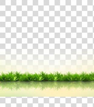 Grass Download Gratis Computer File - Grass PNG