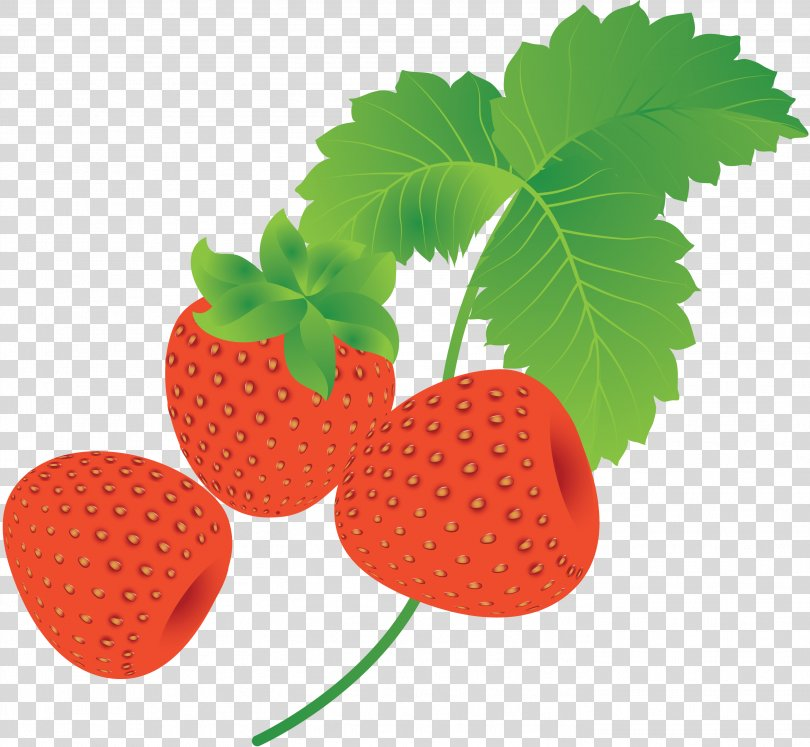 Strawberry Clip Art, Strawberry PNG