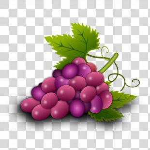 Common Grape Vine Wine Grape Leaves Food - Grapes PNG