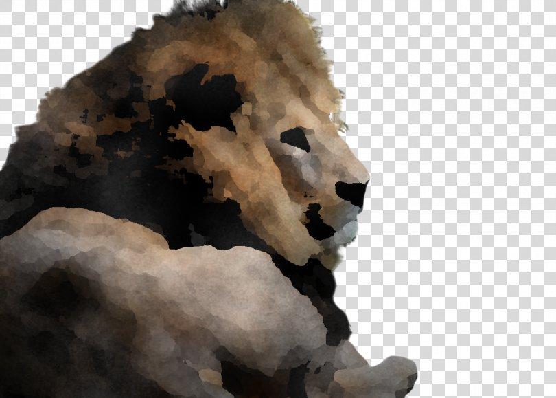 Lion Wildlife Snout Animal Figure, Animal Figure Snout PNG