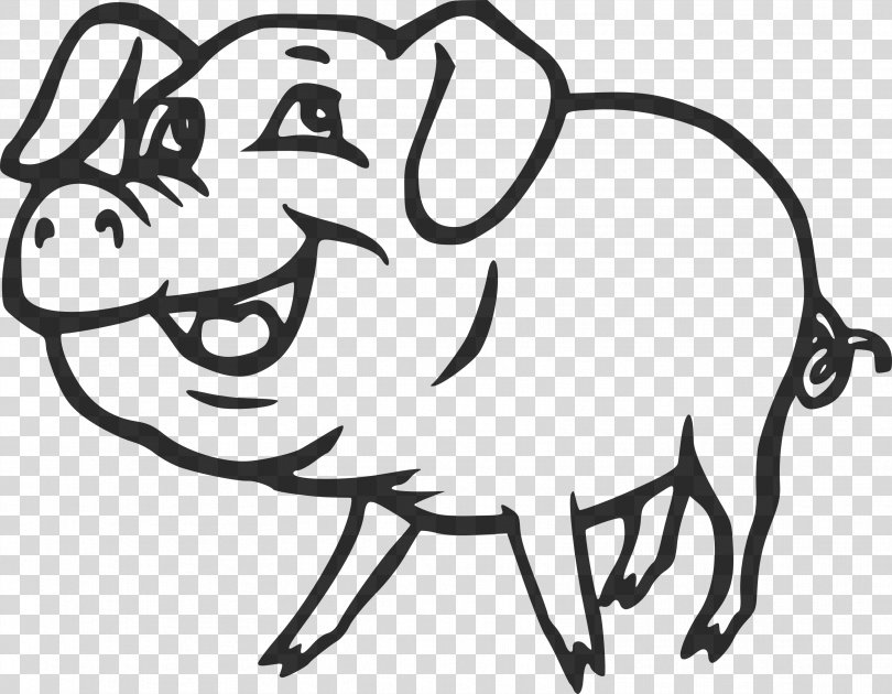 Domestic Pig Drawing Cartoon Clip Art, Pig PNG