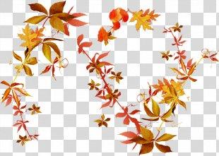 Autumn Leaves Flower Clip Art - Autumn Leaves PNG
