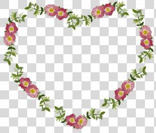 Flower Picture Frames Clip Art - Floral Border PNG