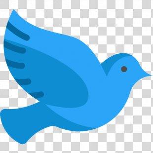 Homing Pigeon Columbidae Bird Doves As Symbols - Pigeon PNG