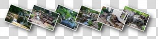 Waterfall Pond Water Feature Landscape Architecture Yard - Waterfall Scenery PNG