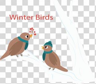 Bird Winter Euclidean Vector - Birds On Winter Branch PNG