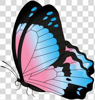Clip Art - Butterfly Blue Pink Transparent Clip Art Image PNG