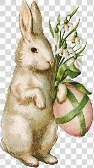 Easter Bunny Wedding Invitation Easter Egg Easter Postcard - Easter PNG