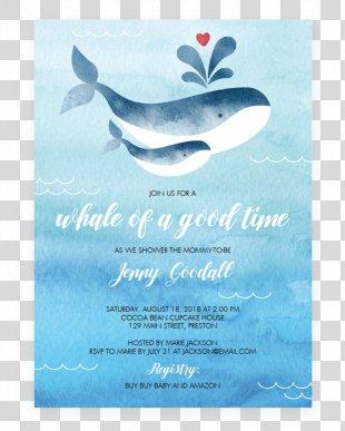 Wedding Invitation Baby Shower Paper Cetacea - Watercolor Invitation PNG