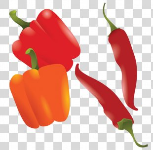 Chili Pepper Drawing Bell Pepper - Pepper PNG