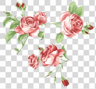 Garden Roses Picture Frames Flower Sticker Clip Art - Korean Red Flowers PNG