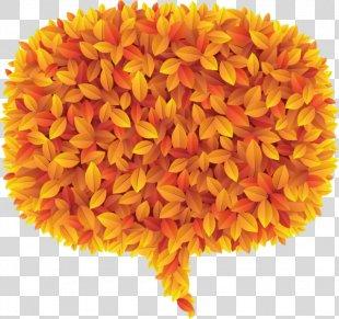 Autumn Leaves Petal Autumn Leaf Color - Autumn Leaves PNG