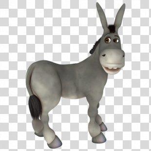 Donkey Photography Aasi - Donkey PNG