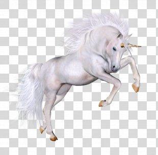 Unicorn Clip Art - Unicorn PNG