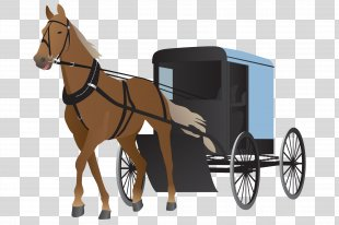 Horse Harnesses Carriage Horse-drawn Vehicle - Horse PNG