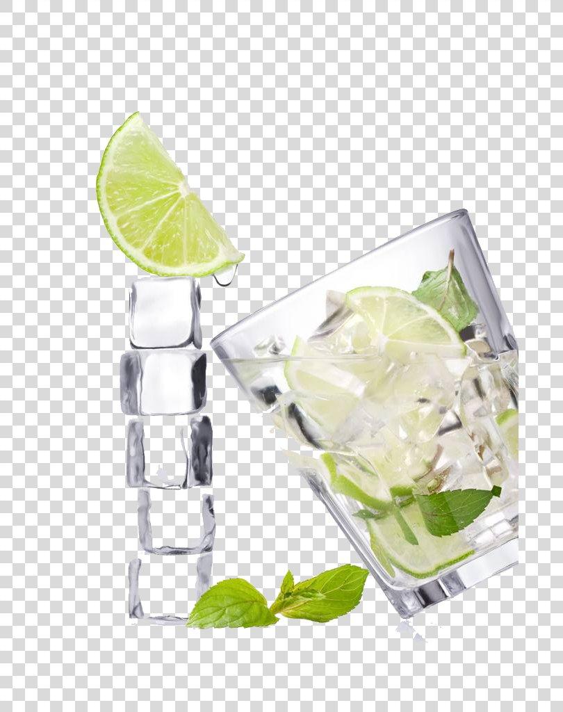 Vodka Tonic Gin And Tonic Juice Lemonade Limeade, Glass,fruit PNG