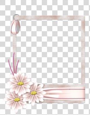 Picture Frames Flower Film Frame - Flower PNG