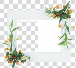Floral Design Picture Frames Flower Film Frame - Flower PNG