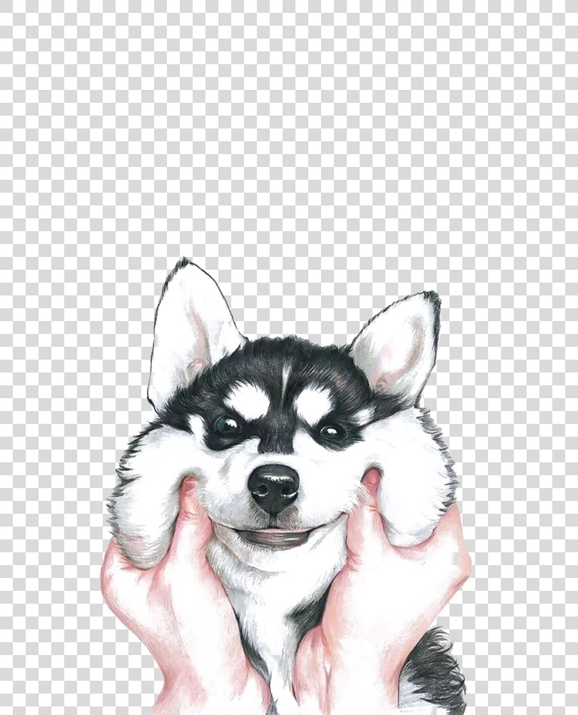 Siberian Husky Drawing, Happy Husky PNG, Free Download