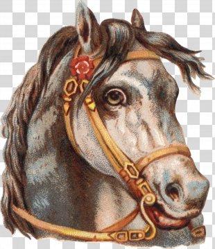 Horse Tack Horse Harnesses Clip Art - Horse PNG