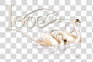 Fashion Accessory Jewellery - Jewellery Fashion Accessory PNG