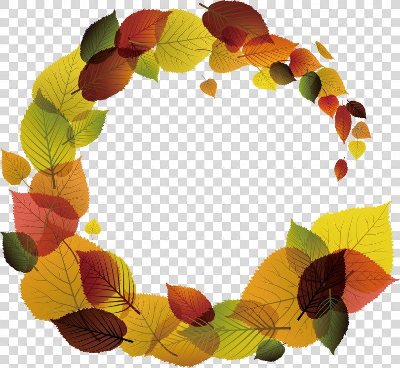 Leaf Color, Fall Season PNG