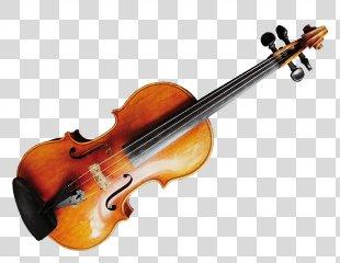 Violin String Instruments Musical Instruments Viola - Violin PNG