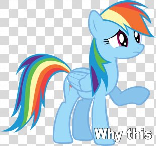 Rainbow Dash Applejack Pony Twilight Sparkle Pinkie Pie - Rainbow PNG