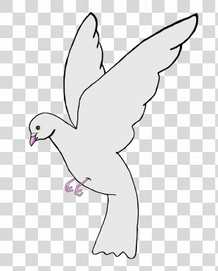 Columbidae Homing Pigeon Clip Art - DOVES PNG