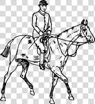 Horse Equestrian Drawing Coloring Book Clip Art - Horse PNG