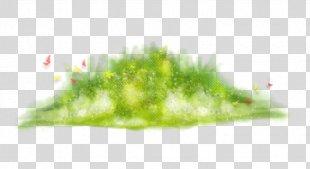 Grass Luzhayka Desktop Wallpaper Clip Art - Grass PNG