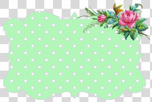 Picture Frames Flower Paper Clip Art - Green Floral PNG