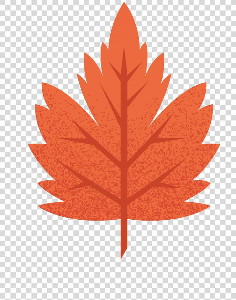 Maple Leaf Euclidean Vector, Autumn Leaves Vector Background PNG