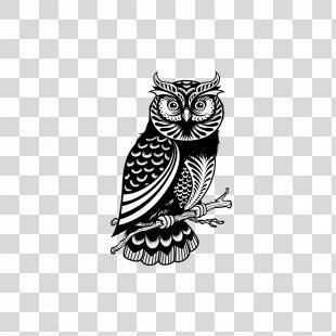 Owl Drawing Royalty-free Illustration - Owl PNG