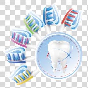 Human Tooth Dentistry Teeth Cleaning - Toothbrush Teeth PNG