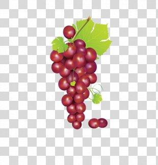 Grape Fruit Clip Art - Bunch Of Grapes PNG