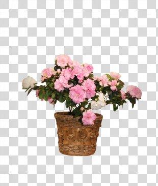 Cut Flowers Floral Design Artificial Flower Floristry - Flower Rattan Photo Frame PNG