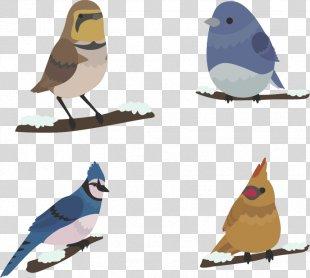 Bird Winter Euclidean Vector - Winter Cute Birds PNG