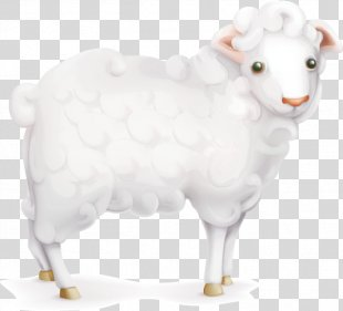 Sheep - Cartoon Sheep PNG