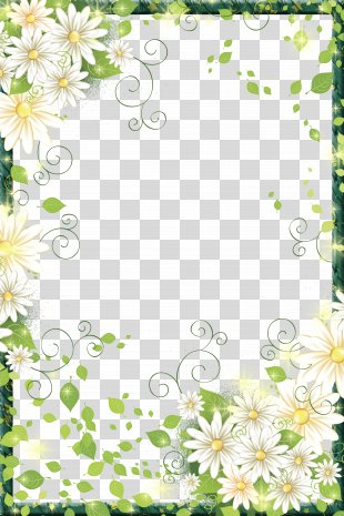 Flowers Picture Frame - Beautiful Flowers Border Frame PNG