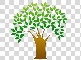 Tree Autumn Leaf Color Clip Art - Tree Clip Art PNG