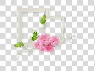 Film Frame Picture Frame - White Frame PNG