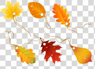 Autumn Leaves Drawing Clip Art - Autumn Leaves PNG