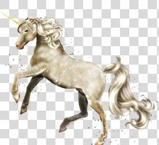Unicorn Fabeltiere Legendary Creature Horse Pegasus - Unicorn PNG