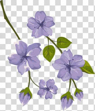 Floral Design Borders And Frames Flower Clip Art Rose - Flower PNG