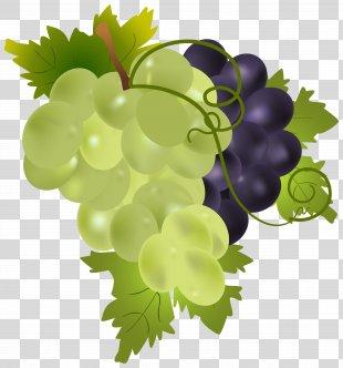 Grape Fruit Clip Art - Grapes Clip Art Image PNG