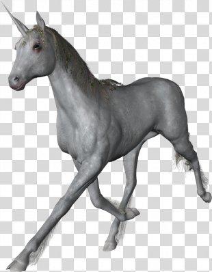 Unicorn PhotoScape Icon - Unicorn PNG