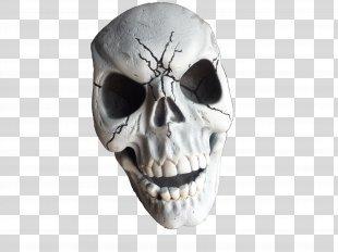 Skeleton Skull Desktop Wallpaper - Skeleton PNG