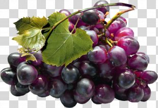 Kyoho Juice Grape Seed Extract - Grapes PNG
